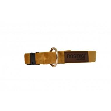 Obroża dla psa złota szer. 2.5 cm M